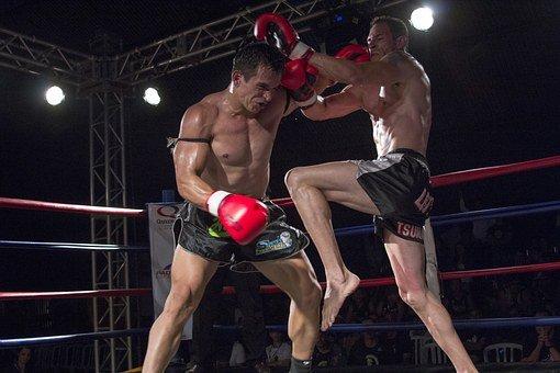 Sztuki walki – ogólnoświatowy fenomen